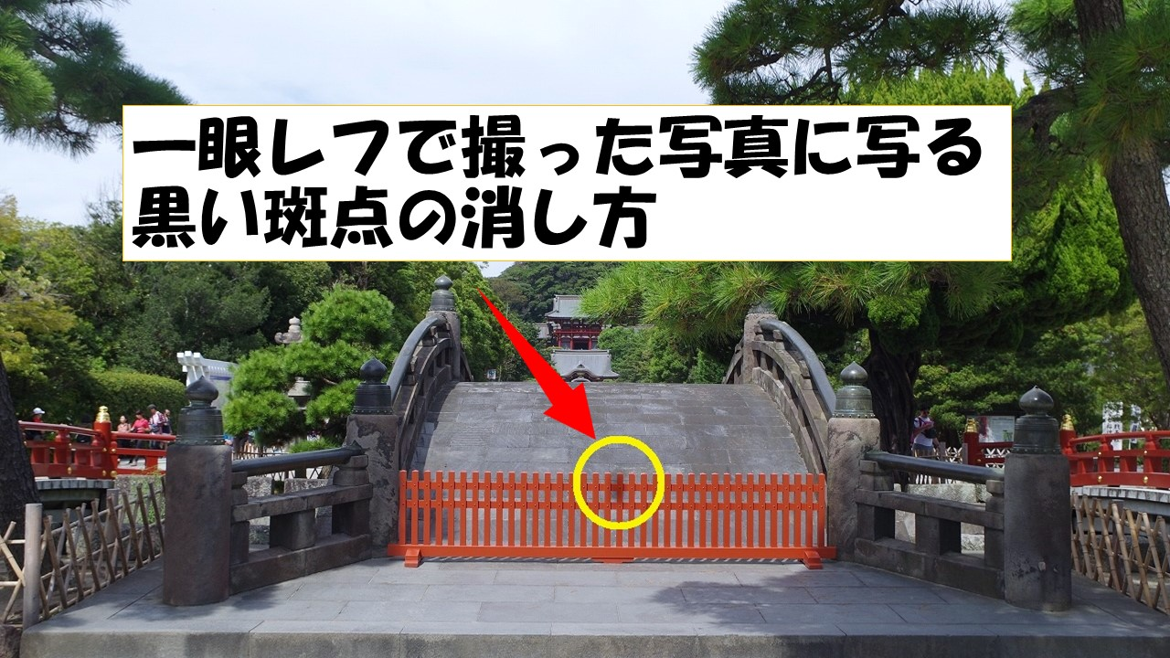 【解決策】一眼レフで撮った写真に写る黒い斑点の消し方